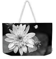 Weekender Tote Bag featuring the photograph Black And White Sunrise Coreopsis by Christina Rollo