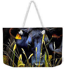 Black Angus Cow  Weekender Tote Bag by Janine Riley