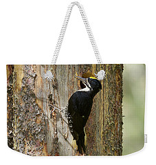 Black-backed Woodpecker Weekender Tote Bag