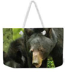 Weekender Tote Bag featuring the photograph Black Bear And Cub On Ground by Coby Cooper