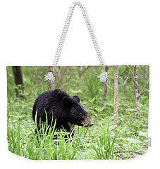 Weekender Tote Bag featuring the photograph Black Bear by Andrea Silies