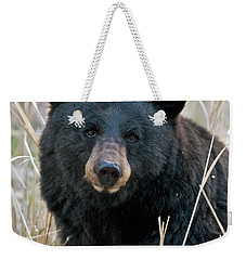 Black Bear Closeup Weekender Tote Bag