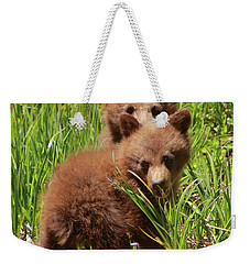 Black Bear Cubs Weekender Tote Bag