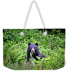 Weekender Tote Bag featuring the photograph Black Bear Eating His Veggies by Peggy Collins