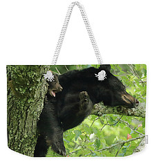 Weekender Tote Bag featuring the photograph Black Bear In Tree With Cub by Coby Cooper