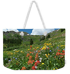 Weekender Tote Bag featuring the photograph Black Bear Pass Landscape by Cascade Colors