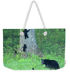 Weekender Tote Bag featuring the photograph Black Bear Sow And Four Cubs by Coby Cooper