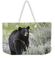 Black Bear Sow Weekender Tote Bag