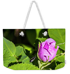 Weekender Tote Bag featuring the photograph Black Bee On Approach by Darcy Michaelchuk