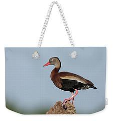 Black-bellied Whistling Duck Weekender Tote Bag