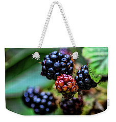 Black Berries Weekender Tote Bag by Shirley Mangini