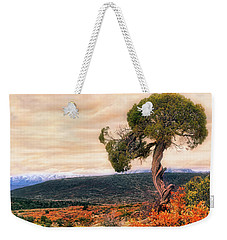 Weekender Tote Bag featuring the photograph Black Canyon Juniper - Colorado - Autumn by Jason Politte