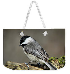 Black-capped Chichadee Weekender Tote Bag