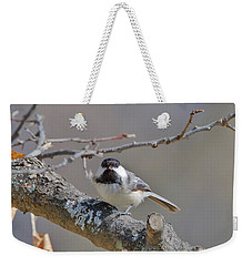 Weekender Tote Bag featuring the photograph Black Capped Chickadee 1109 by Michael Peychich