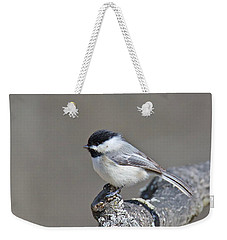 Weekender Tote Bag featuring the photograph Black Capped Chickadee 1128 by Michael Peychich
