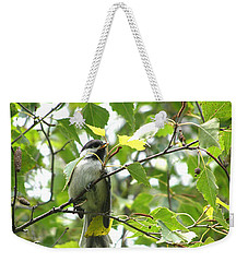 Weekender Tote Bag featuring the photograph Black Capped Chickadee  by Angie Rea