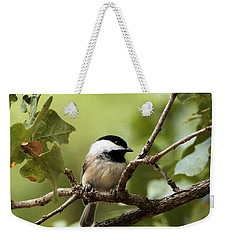 Black Capped Chickadee On Branch Weekender Tote Bag