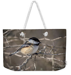 Black-capped Chickadee Iv Weekender Tote Bag
