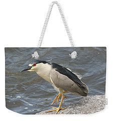 Weekender Tote Bag featuring the photograph Black-crowned Night Heron by Doris Potter