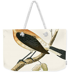 Black Eared Wheatear Weekender Tote Bag by English School