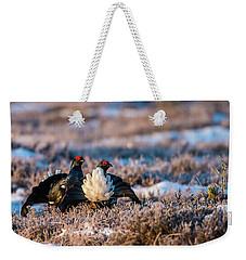 Black Grouses Weekender Tote Bag by Torbjorn Swenelius