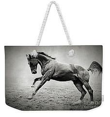 Black Horse In Dust Weekender Tote Bag