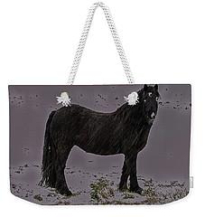 Black Horse In The Snow Weekender Tote Bag