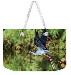 Black-necked Stilt 4687-091017-2cr Weekender Tote Bag