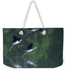 Black-necked Stilts 4302-080917-2cr Weekender Tote Bag