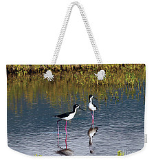 Weekender Tote Bag featuring the photograph Black-necked Stilts by Patricia Griffin Brett