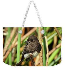 Black Phoebe Close Up Weekender Tote Bag