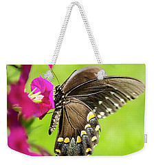 Weekender Tote Bag featuring the photograph Black Swallowtail Butterfly by Christina Rollo