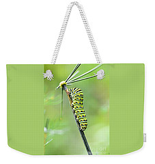 Black Swallowtail Caterpillar Weekender Tote Bag