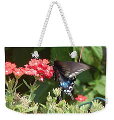 Black Swallowtail  Weekender Tote Bag