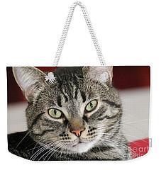 Black Tabby Weekender Tote Bag
