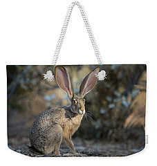 Black-tailed Jackrabbit Weekender Tote Bag