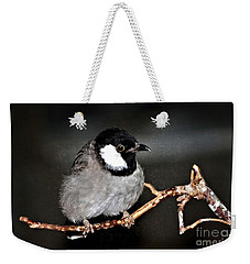 Black Throated Laughing  Thrush Weekender Tote Bag