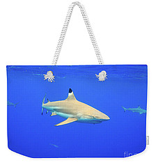 Blacktip Reef Shark Weekender Tote Bag