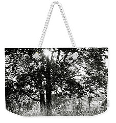Blazing Tree Weekender Tote Bag