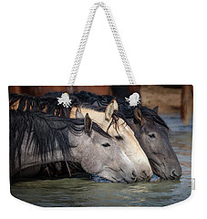 Blended Color Family Of Wild Horses Weekender Tote Bag