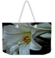 Weekender Tote Bag featuring the photograph Blessings  by Connie Handscomb