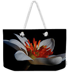 Bloodroot Art Weekender Tote Bag
