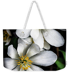 Weekender Tote Bag featuring the photograph Bloodroot In Bloom by Thomas R Fletcher