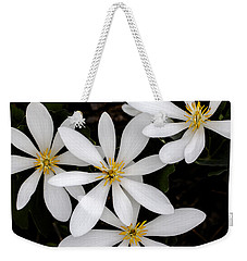 Weekender Tote Bag featuring the photograph Sanguinaria by Skip Tribby