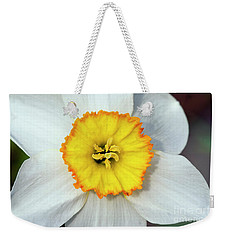 Bloom Of Narcissus Weekender Tote Bag by Michal Boubin
