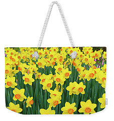 Weekender Tote Bag featuring the photograph Blooming Yellow Daffodils by Hans Engbers