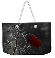 New Life Weekender Tote Bag by Sherman Perry