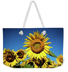 Weekender Tote Bag featuring the photograph Blue And Gold by Sandy Molinaro