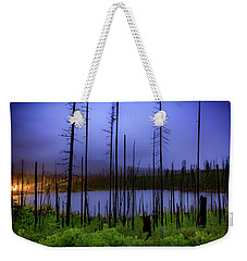 Weekender Tote Bag featuring the photograph Blue And Green by Cat Connor