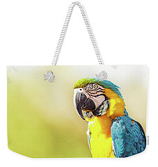 Blue And Yellow Macaw With Copy Space Weekender Tote Bag